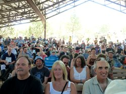 newfolk_audience