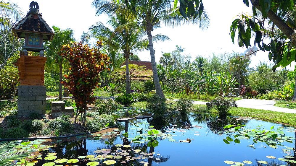 Naples Botanical Gardens - michael camp