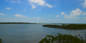 Backwaters of Big Torch Key - Summerland Bridge in the distance