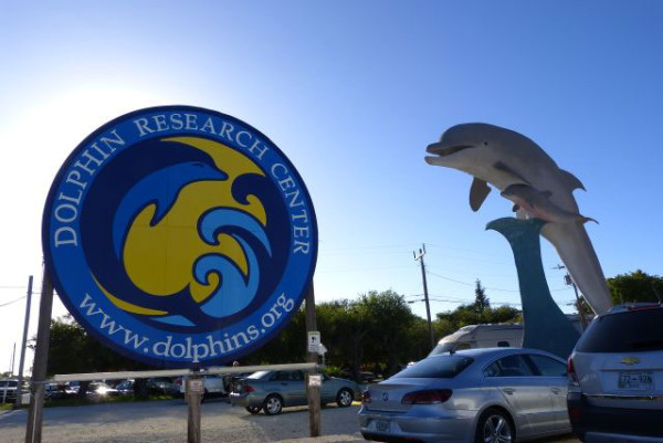 Dolphin Research Center - Marathon, FL