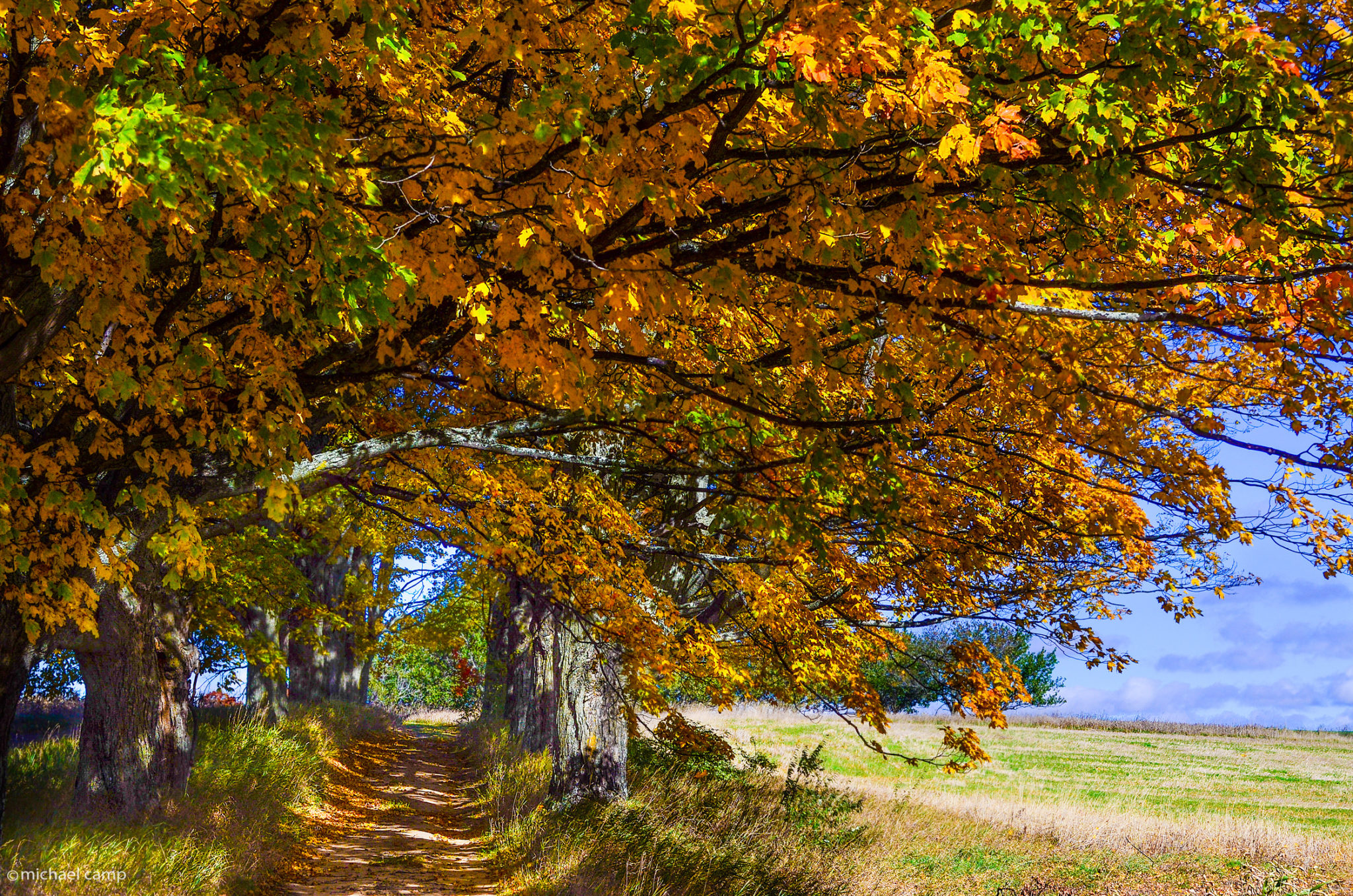 Shades of October